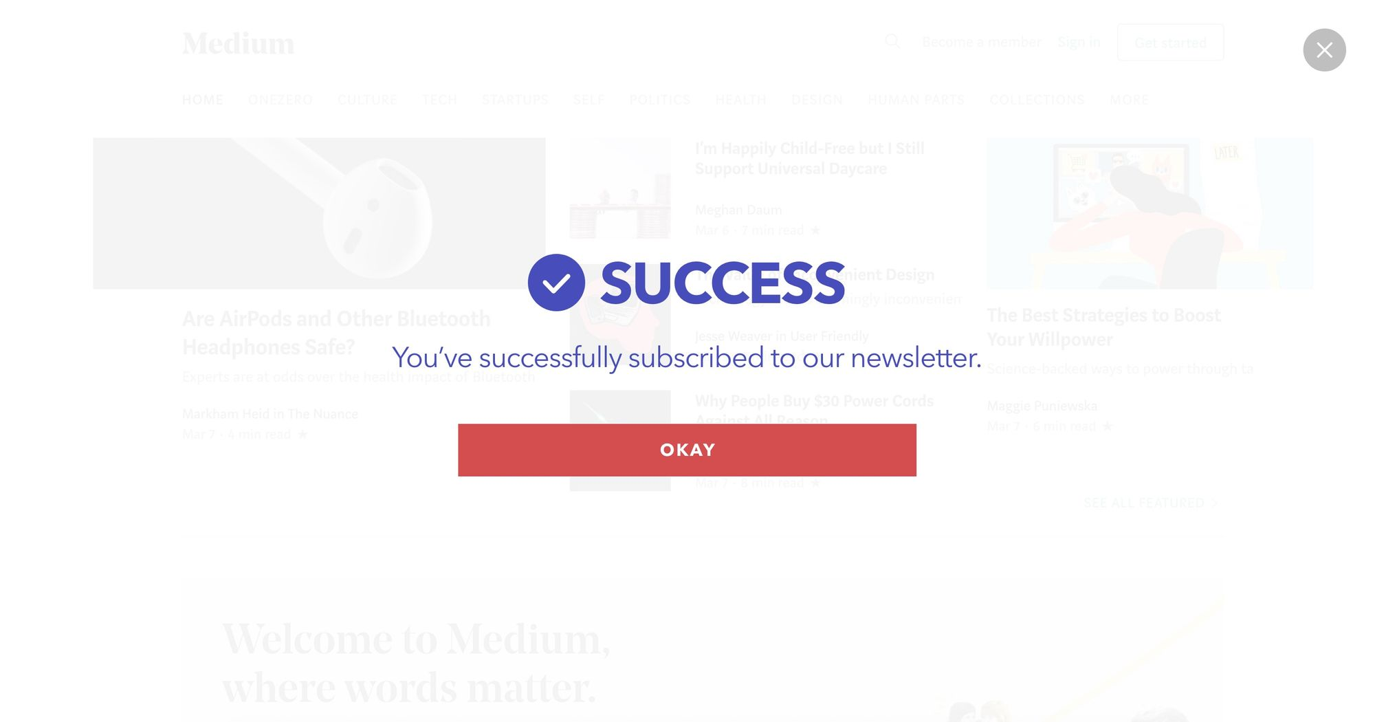Dont Miss Updates From Us-Newsletter Popup 01(Fullscreen Success)